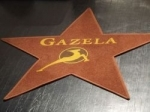 Znani kandidati izbor Gazela 2010