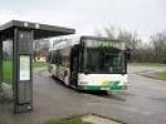 Plačilo z gotovino na mestnih avtobusih še do 30. junija 2010