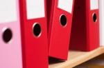 Izplačevalci dohodkov morajo podatke o vzdrževanih družinskih članih sporočiti na DURS do konca leta