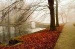 Izkusite zlato jesen v Evropi