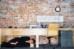 Zakaj nesposobni delavci ostajajo v službi