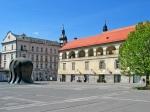 Mariborski župan vabi na vola