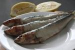 Zaščitna vloga omega-3 maščobnih kislin
